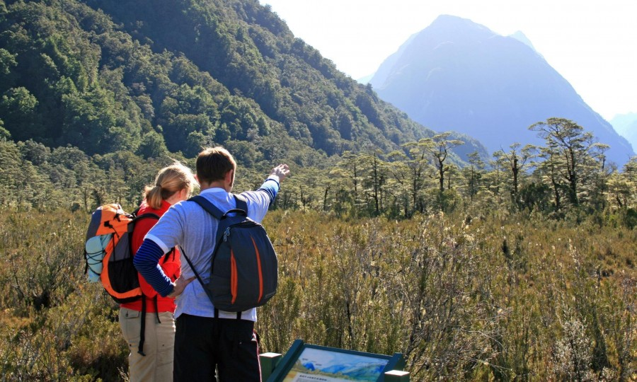 Milford Track Guided Day Walk Real Journeys 2