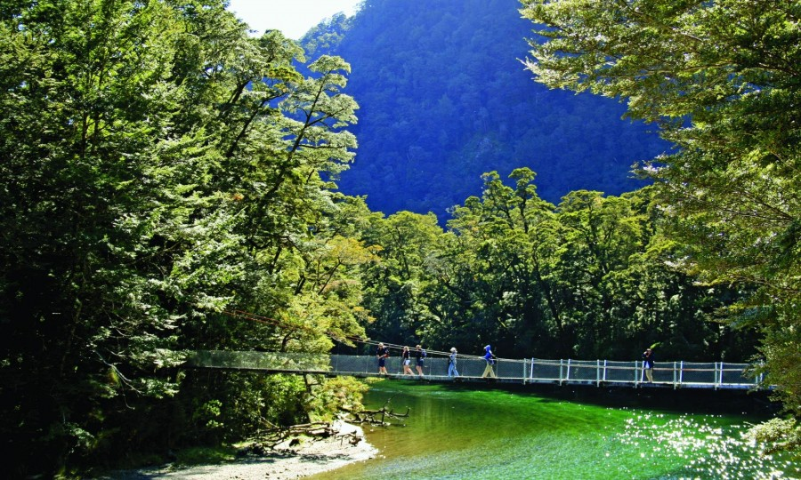 Milford Track Guided Day Walk Real Journeys 4