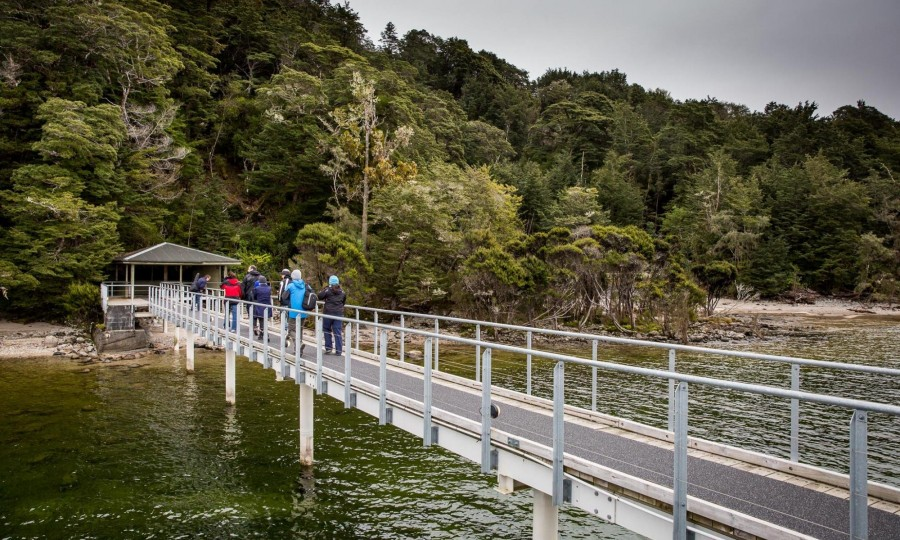 Te Anau Glowworm Caves Real Journeys 2