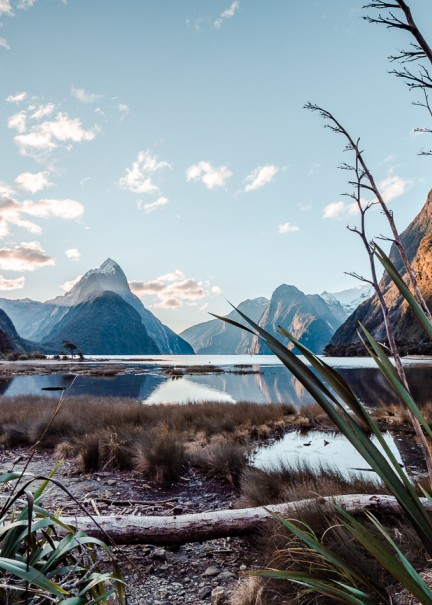 Magical Milford Sound Alexx 14